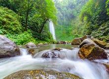 Cascade tropicale et rivière débordante Images libres de droits