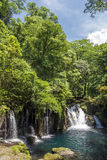 Cascade under primeval forest Royalty Free Stock Image