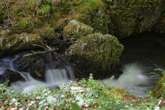 Cascade in Vallee du Sichon Royalty Free Stock Photo