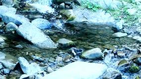 Cascade van kleine watervallen in de panoramische video van de bergkreek stock footage