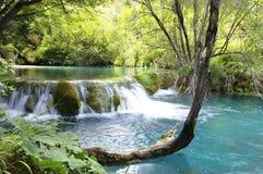 Cascade van watervallen Stock Foto