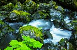 Cascade Royalty Free Stock Photos