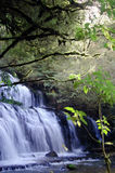 Cascade Water Fall. Water falls - slow in forest royalty free stock image
