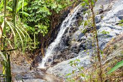 Cascade Waterfall in deep green forest on mountain river in jungle. royalty free stock images