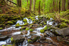 Cascade waterfall in the forest Stock Photos