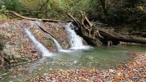 Waterfall of Bezumenka River, Sochi, Russia stock video