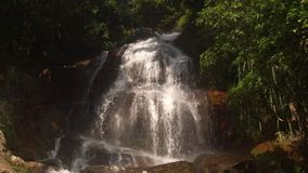 Cascade waterfall in picturesque jungle rainforest. Small beautiful cascade waterfall in the picturesque jungle rainforest. Stream of mountain fresh water flows stock video