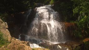 Cascade waterfall in picturesque jungle rainforest. Small beautiful cascade waterfall in the picturesque jungle rainforest. Stream of mountain fresh water flows stock video footage