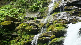 Cascade waterfall splash on stones in forest among mountains. Slow motion. stock video
