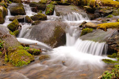 Cascade in the Wilds Royalty Free Stock Image