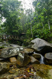 Cascaded river flowing through with bridge background surrounded by green forest Stock Images