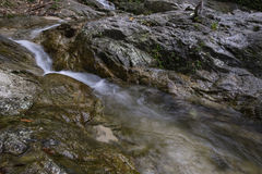 Cascaded river flowing through tropical rain forest Royalty Free Stock Photo