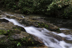 Cascaded river flowing through tropical rain forest Royalty Free Stock Photos
