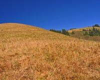 Cascadehoofd op de Kust van Oregon Stock Afbeelding