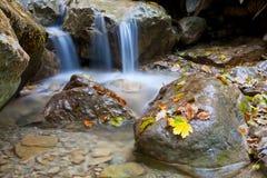 cascadeon小山的河 库存照片