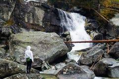 Cascades à écriture ligne par ligne froides de crique Parc narodny de Tatransky Vysoke tatry slovakia photographie stock