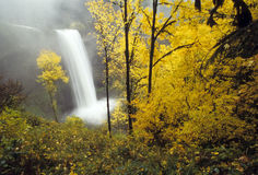 Cascades à écriture ligne par ligne d'automne Photos stock