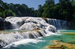 Cascades à écriture ligne par ligne d'Azul d'Agua, Chiapas, Mexique Photographie stock