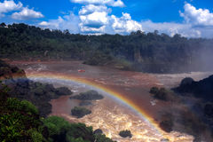 Cascades à écriture ligne par ligne d'Iguazu Images libres de droits