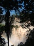 Cascades à écriture ligne par ligne d'Iguazu Image libre de droits