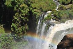 Cascades à écriture ligne par ligne d'Iguazu avec l'arc-en-ciel Image libre de droits