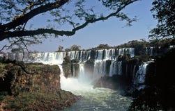 cascades à écriture ligne par ligne d'iguazu de l'Argentine photographie stock libre de droits