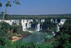 cascades à écriture ligne par ligne d'iguazu du Brésil photos libres de droits