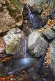 Cascades à écriture ligne par ligne dans la forêt Photos libres de droits