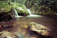 Cascades à écriture ligne par ligne dans la forêt Images libres de droits