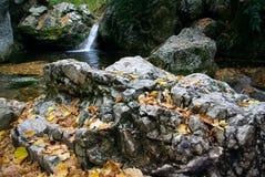 Cascades à écriture ligne par ligne dans les montagnes Photo libre de droits