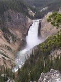 cascades à écriture ligne par ligne de gorge dans Yellowstone   Photographie stock libre de droits
