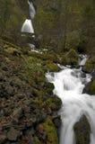 Cascades à écriture ligne par ligne de montagne Images stock