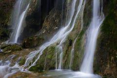 cascades à écriture ligne par ligne de source de forêt Photos stock