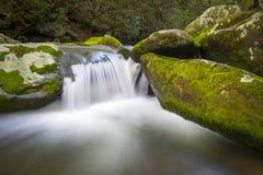 Cascades à écriture ligne par ligne de stationnement national de Great Smoky Mountains de fourchette d'hurlement images stock