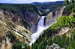 Cascades à écriture ligne par ligne de Yellowstone Photographie stock