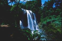 Cascades à écriture ligne par ligne Honduras de Yajoa photographie stock