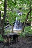 Cascades à écriture ligne par ligne par les arbres avec le banc Images stock
