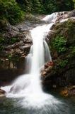 Cascades à écriture ligne par ligne tropicales Photographie stock libre de droits