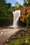 Cascades à écriture ligne par ligne tropicales Images libres de droits