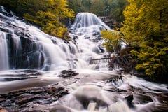 Cascades à l'automne avec les arbres jaunes Images stock
