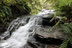 The Cascades. Leura Cascades waterfall in The Blue Mountains NSW Stock Photo