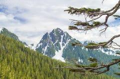 Cascades. Royalty-vrije Stock Foto's