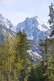 Cascades américaines Photos libres de droits