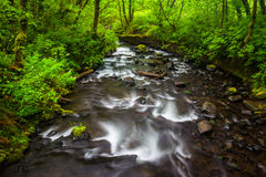 Cascades on Bridal Veil Creek in the Columbia River Gorge  Stock Photography