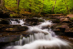 Cascades and bright spring greens on Glen Leigh, in Ricketts Glen State Park Stock Photo