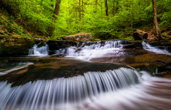 Cascades and bright spring greens  in Ricketts Glen State Park Royalty Free Stock Image