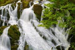 Cascades BRITANNIQUES d'hirondelle du Pays de Galles image stock