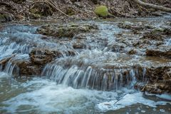 Cascades on a clear creek in a forest stock photo