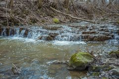 Cascades on a clear creek in a forest. stock image