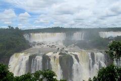 Cascades d'Iguassu dans la jungle Images libres de droits